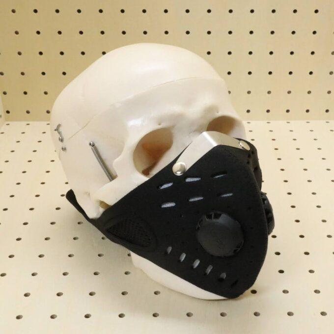 マスクを装着してみたところ